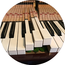 Piano Tuning Green Bay 1